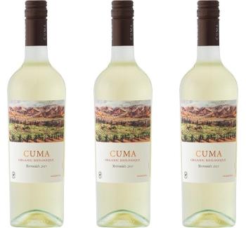 torrontes cuma argentina wine